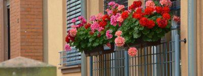 Balconnière : Plusieurs idées pour décorer vos façades