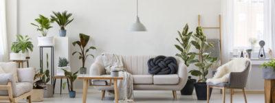 Meubles design : comment relooker votre salon à petit prix ?