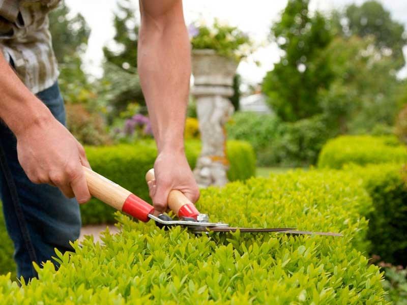 Bons à savoir sur l'aménagement d'une terrasse ou d'un jardin