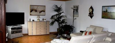 Plante d'appartement : idées déco pour un intérieur soigné et dépollué