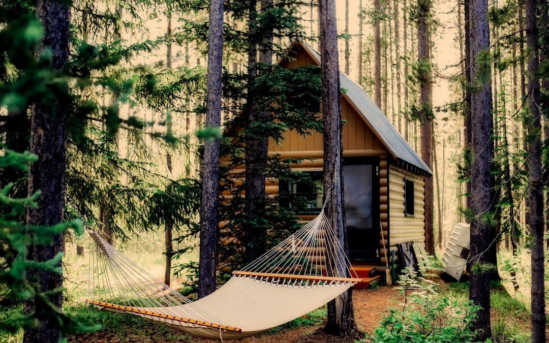 Cabane arbre : Construisez votre propre cabane [Guide complet]