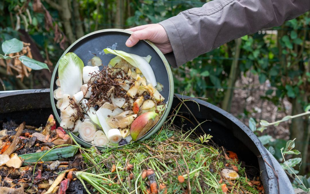 Comment faire un bon compost pour son jardin?