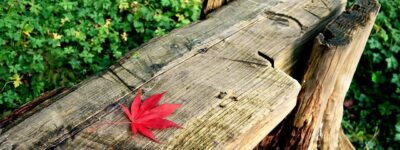 Relooker un meuble : Nos conseils de pro pour les meubles en bois massif