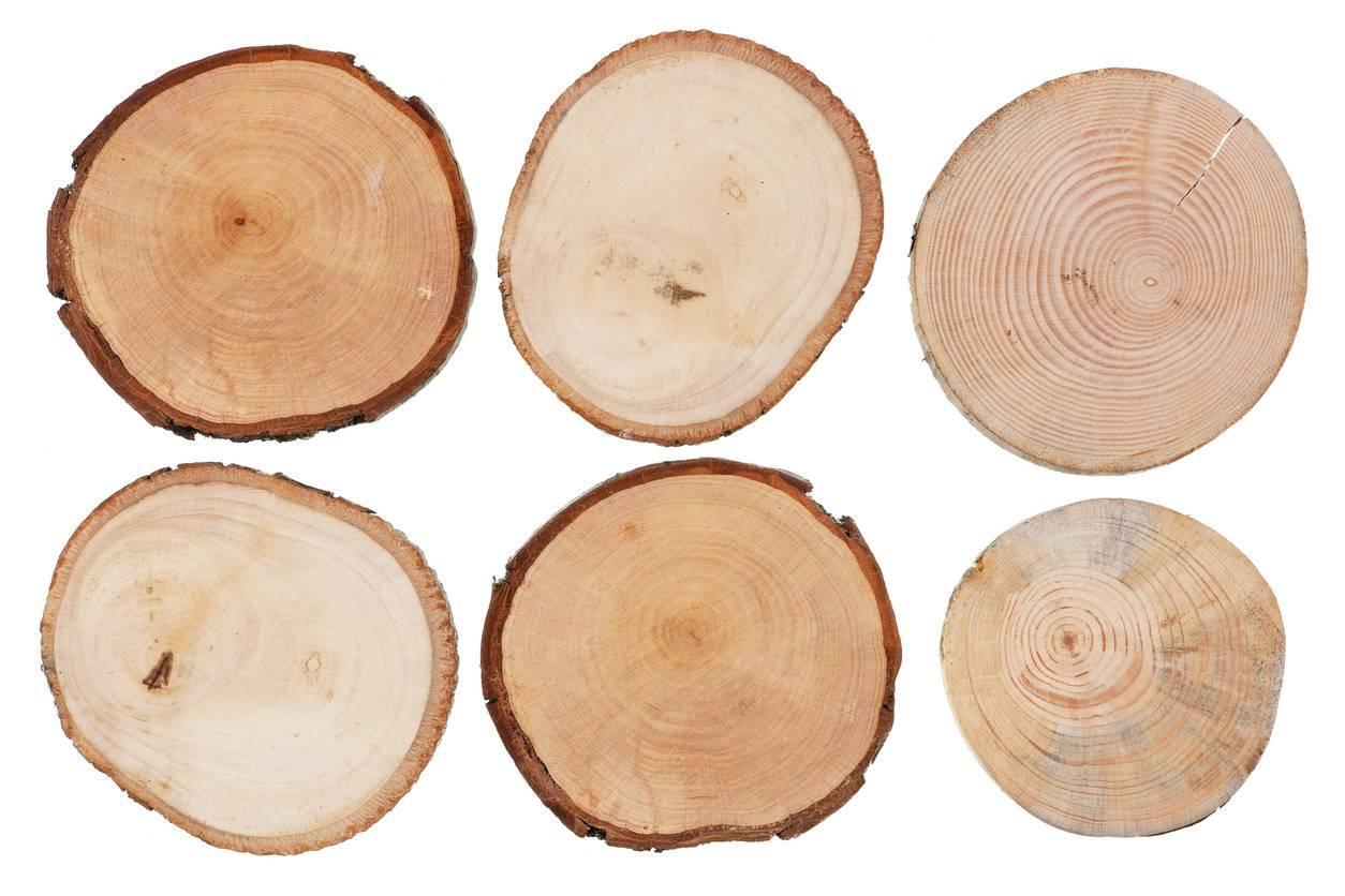 découpe bois