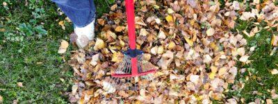 Les meilleurs outils pour entretenir sa pelouse