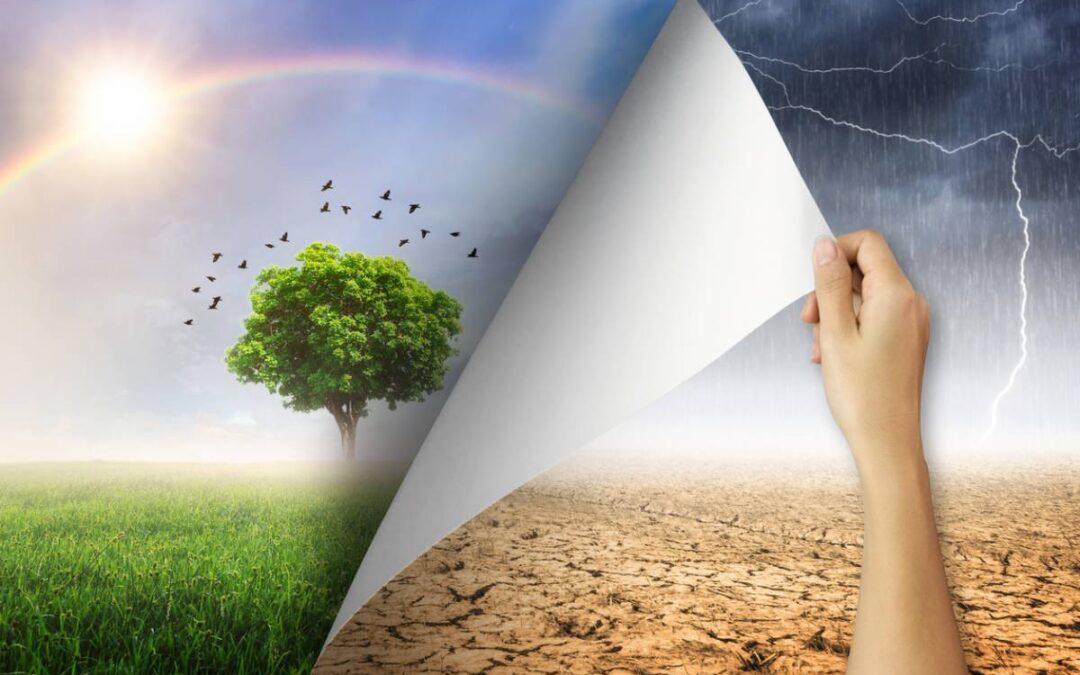 Transition écologique : ces aides pour vous aider à passer le cap